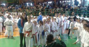 slika-karate-2